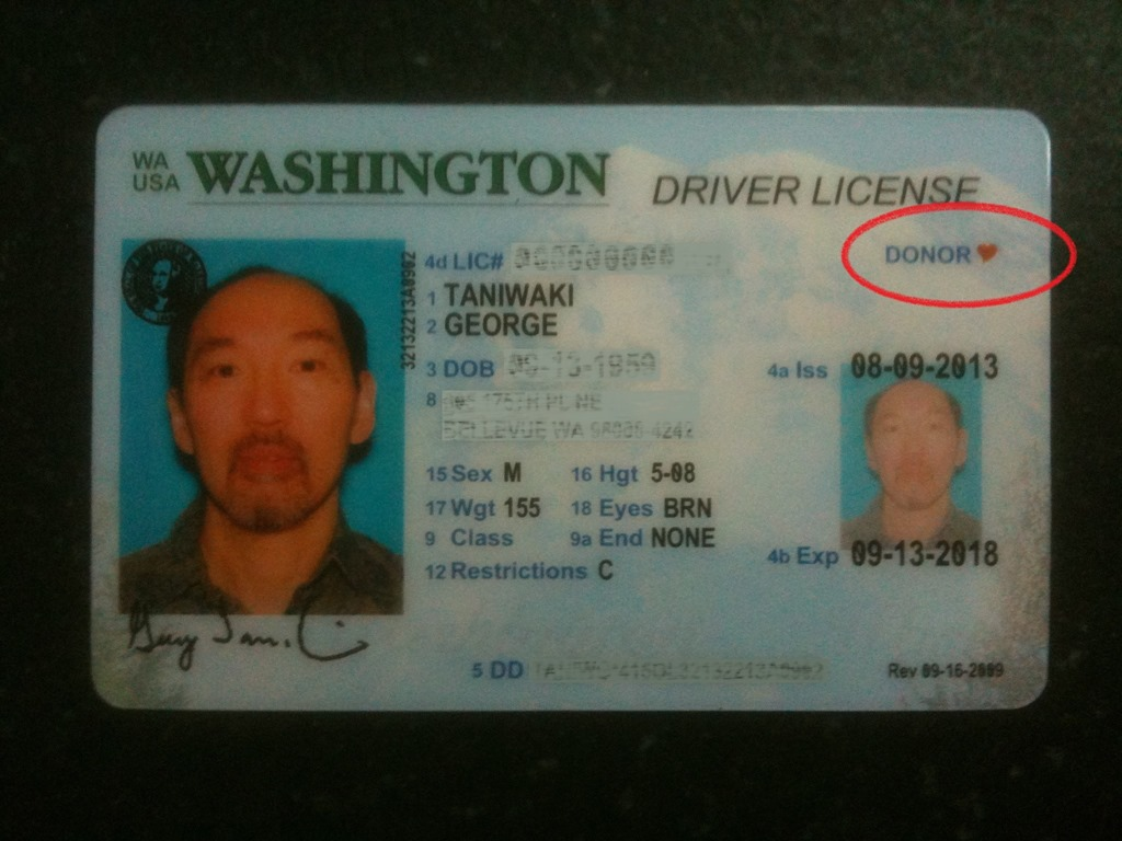 when does my drivers license expire
